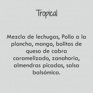Bowl Tropical / 570 cal