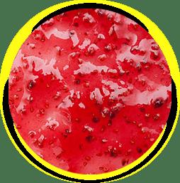 Salsa frutos rojos